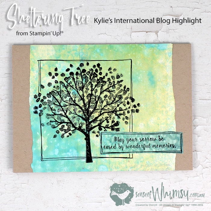 Kylie's International Blog Highlight