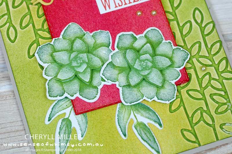 Painted Season Succulents