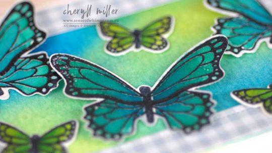 Butterfly Gala Header