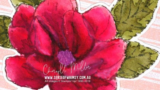 Watercolour Magnolia Header