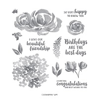Beautiful Friendship Stamp Set
