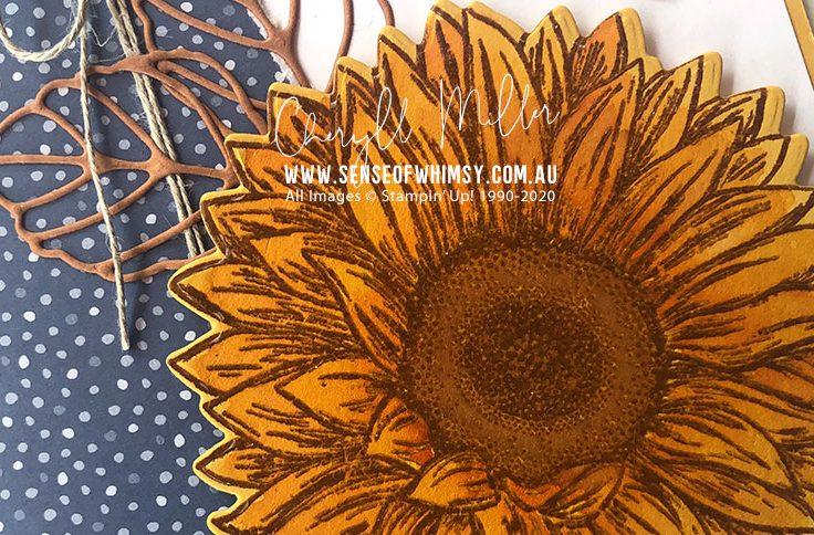 Celebrate Sunflowers Header