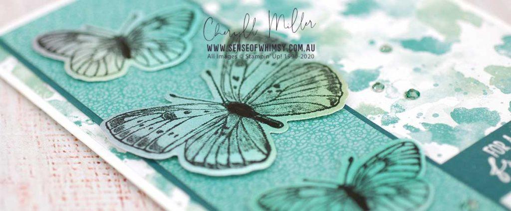 Butterfly Brilliance Header