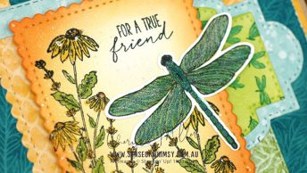 Dragonfly Garden Bundle Header
